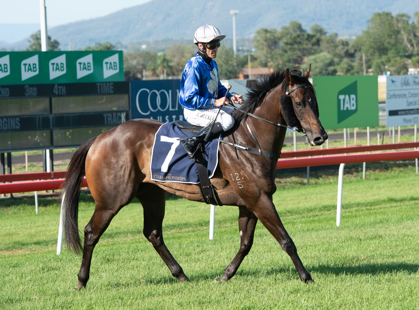 Country Championships Wildcard